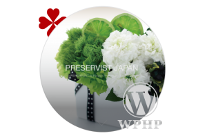 preservist.jp_WordPress,ホームページ,デザイン,HP,作成,制作,安い,料金,レスポンシブ,おしゃれ,女性向け,プリザーブドフラワー,スクール,講座,集客,iphone,ipad,スマホ,タブレットPC,toru chang